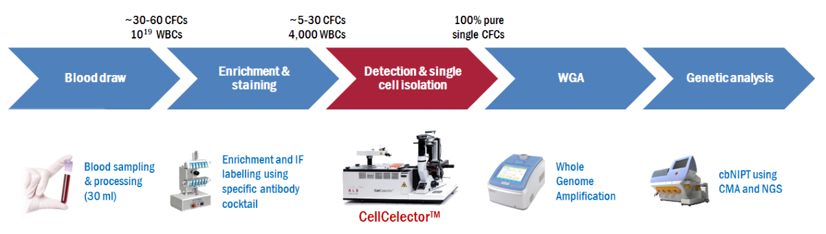 Workflow for isolation of single fetal cells from maternal blood with ALS CellCelector